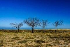 17-Uruguai.jpg